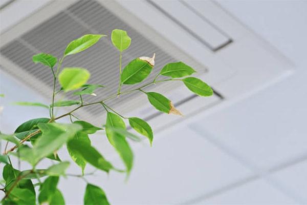 vvs roskilde ventilation sundt indeklima